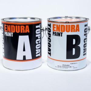 Endura EX-2C Clear 100 KIT